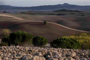Between Pienza and S. Quirico d'Orcia at dusk