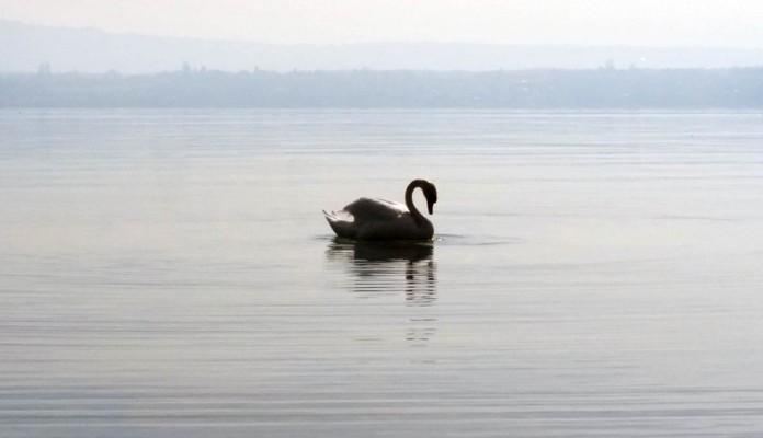 on the lake1